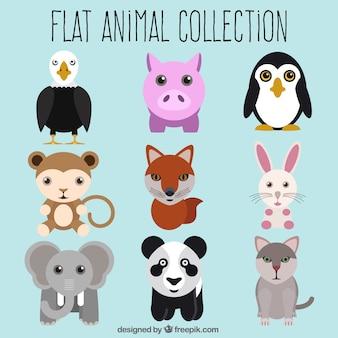Flat animal set