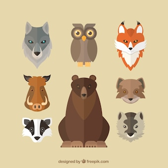 Flat avatars of wild animals