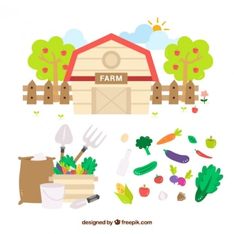 Flat barn with vegetables and farming tools
