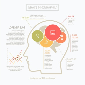 Flat brain infographic with graph and colorful circles