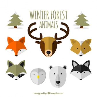 Flat collection of winter forest animals