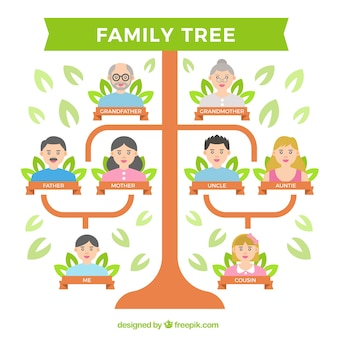 Flat family tree with several generations