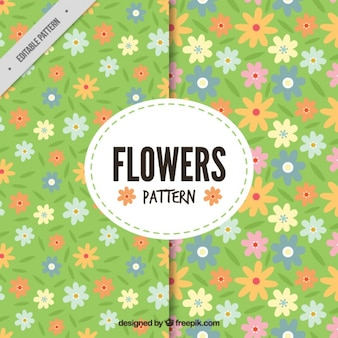 Flat flowers patterns with green background