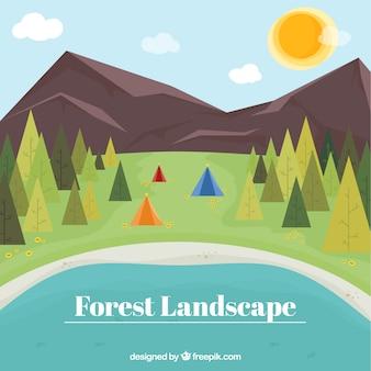Flat forest landscape background