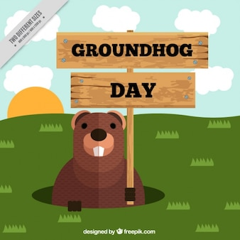 Flat groundhog day background with wooden sign