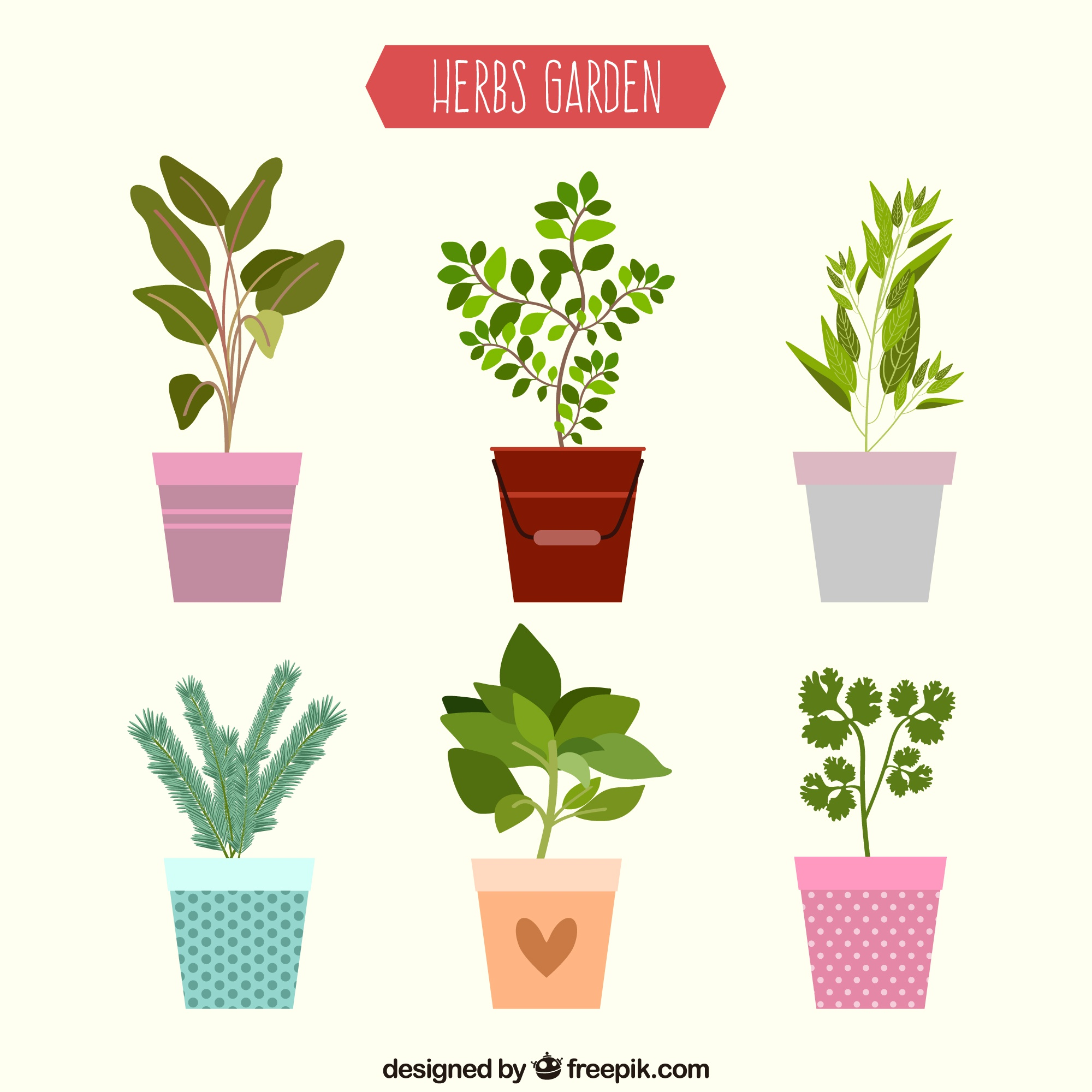Flat herbs garden collection