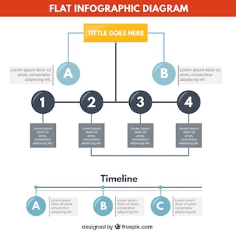 Flat infographic diagram
