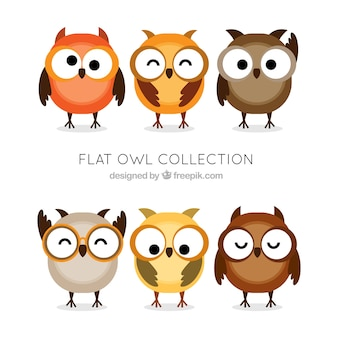 Flat set of funny owls