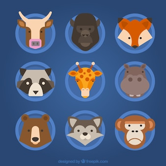 Flat set of great animal's faces