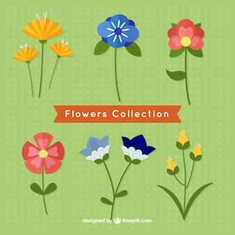 Flat spring Flowers Collection