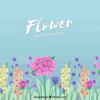 Floral background with lovely rose