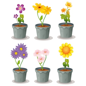 Flowerpots collection