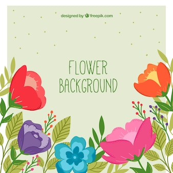 Flowers background with colorful style