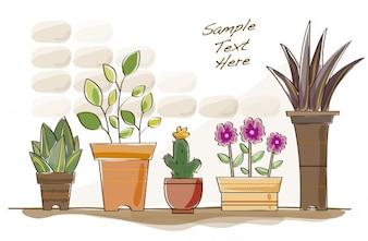 Flowers pots background