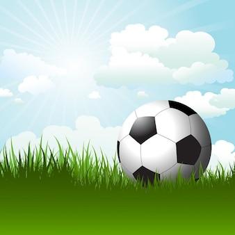 Football in grass against a sunny sky