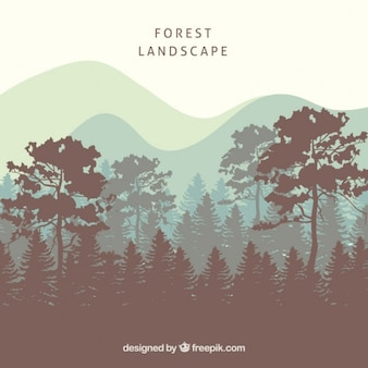 Forest landscape background with tree silhouettes