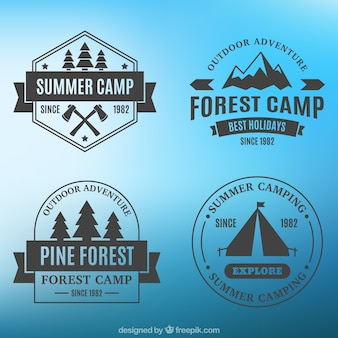 Four badges of camping on a blue background