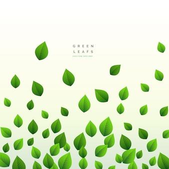 Fresh green leaves design