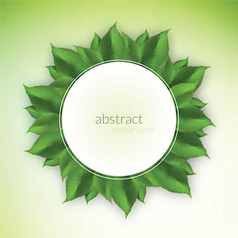 Свежий зеленый лист
