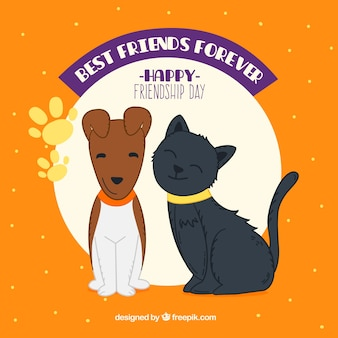 Friendship day background with dog and cat