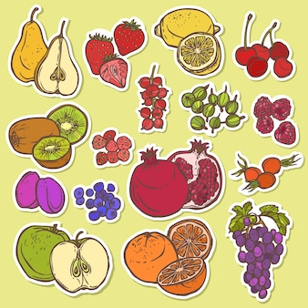 Fruits and berries sketch stickers colored