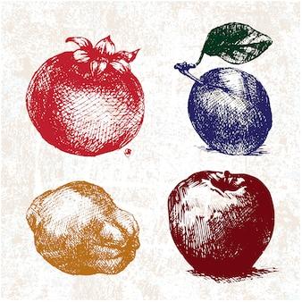 Fruits and vegetables design