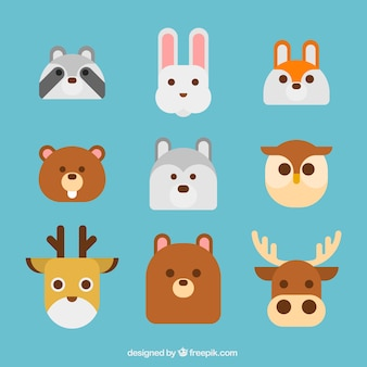 Fun animals faces with flat design