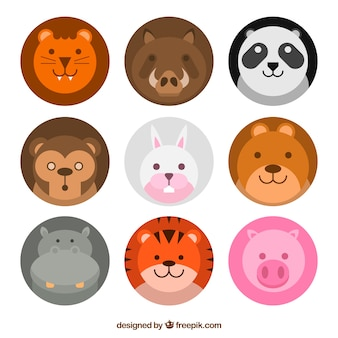 Fun pack of lovely animal faces