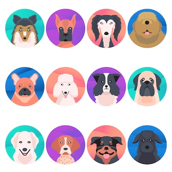 Funny dogs icon collection