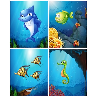 Funny fishes background collection
