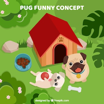 Funny pugs playing in the garden