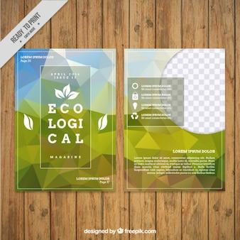 Geometrical ecological flyer