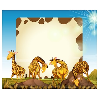 Giraffes background design