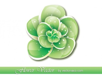 Glossy Green Flower