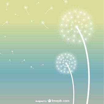 Glowing white dandelions