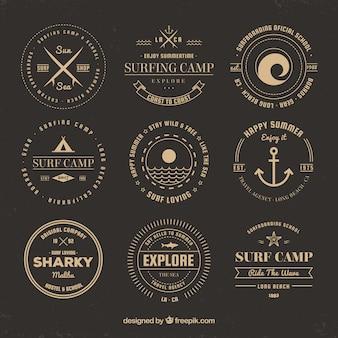Golden summer logo collection