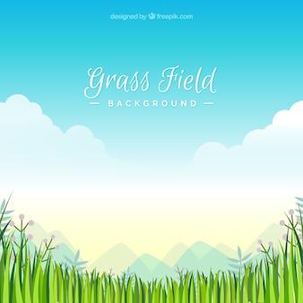 Grass field background in flat design