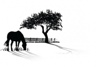 grazing horse silhouette vector pack
