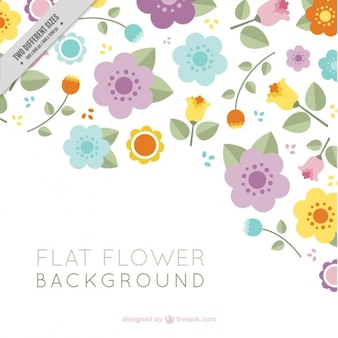Great background of flat flowers