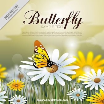 Great background with butterfly and flowers in realistic style