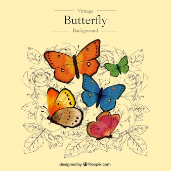 Great vintage background with colorful butterflies