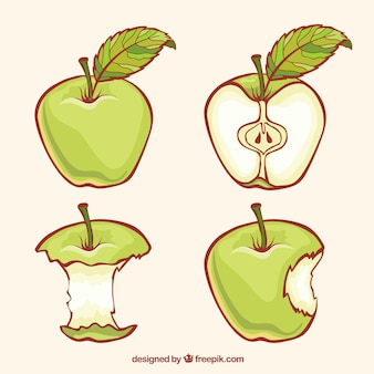 delicious green apple illustration - photo #31