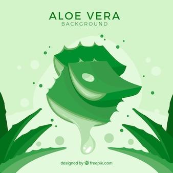Green background of aloe vera leaves