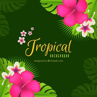 Green background of tropical flowers