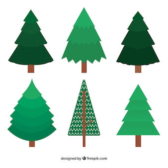 green christmas trees in flat design