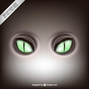 Green feline eyes vector