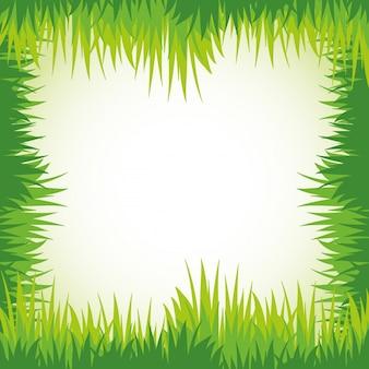 Green grass for frame template
