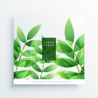 Зеленые листья вектор природа фон карта