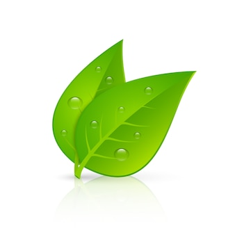 Green leaves realistic image print
