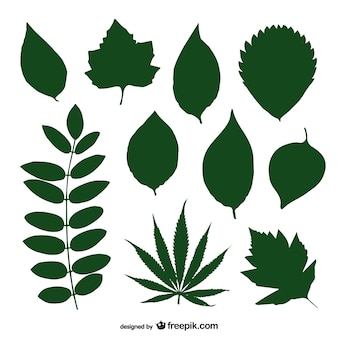 Green leaves vector silhouette collection